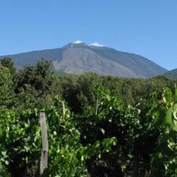 Etna Ovest - Monti De Fiore