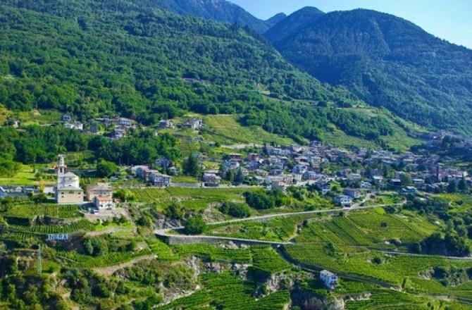 Enotour Valtellina